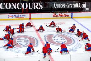Billets pour la journée Pro-Hockey