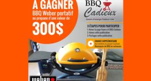 BBQ Weber portatif au propane