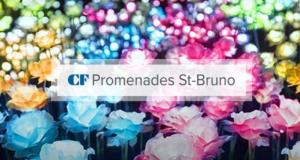 Carte-cadeau de 100$ pour magasiner à CF Promenades St-Bruno
