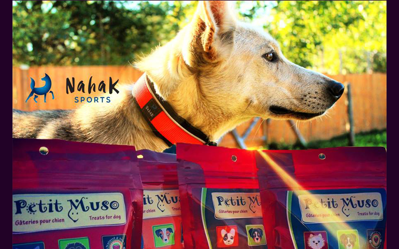 Gâteries pour chiens et un collier NAHAK SPORTS