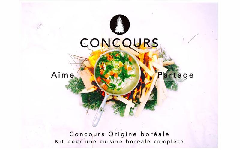 Kit pour une cuisine bor al compl te chantillons for Gagner une cuisine 2017