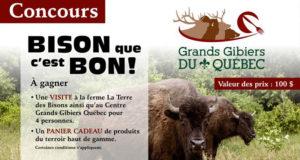 Visite à la ferme La Terre des Bisons