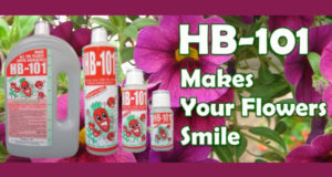 Échantillons de HB-101 Plant Vitalizer