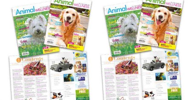 Magazine Animal Wellness Gratuit