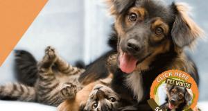 Échantillons gratuits de Pet Wants pour chats et chiens