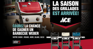 Un barbecue Weber Spirit II E-210