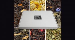 Trousse d'échantillons gratuits de thé chaud Pure Leaf