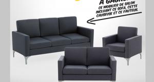 Un mobilier de salon incluant sofa, causeuse et fauteuil