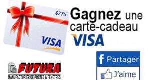 Carte visa prépayée de 275 $