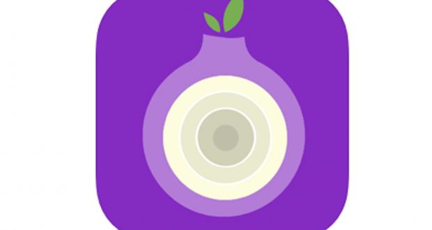 Application Purple Onion - TOR Browser VPN gratuite