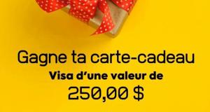 Une carte-cadeau VISA de 250$