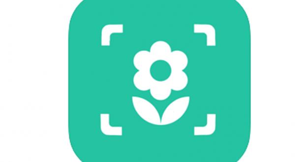 Application iplant - Plant identifier gratuite