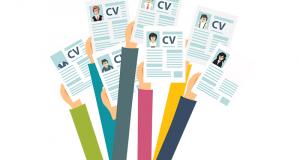 Une dizaine de modèles de CV Premium Gratuits