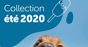 Circulaire Mondou du 6 juillet au 26 juillet 2020