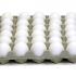 Oeufs blancs Selection 30 unités