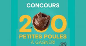 Gagnez 200 petites poules en chocolat