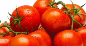 Tomates sur vigne à 78¢ la livre seulement