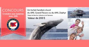 Gagnez une croisière aux baleines AML