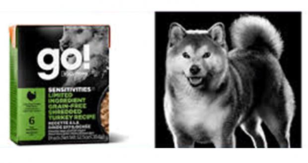 Des sacs de nourriture pour chien Petcurean Gratuits