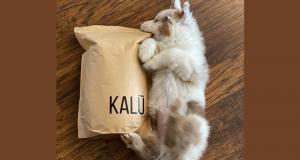 Échantillons gratuits de la nourriture pour chiens KALŪ