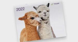 Recevez gratuitement par la poste votre calendrier TELUS 2022